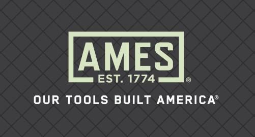 AMES logo.